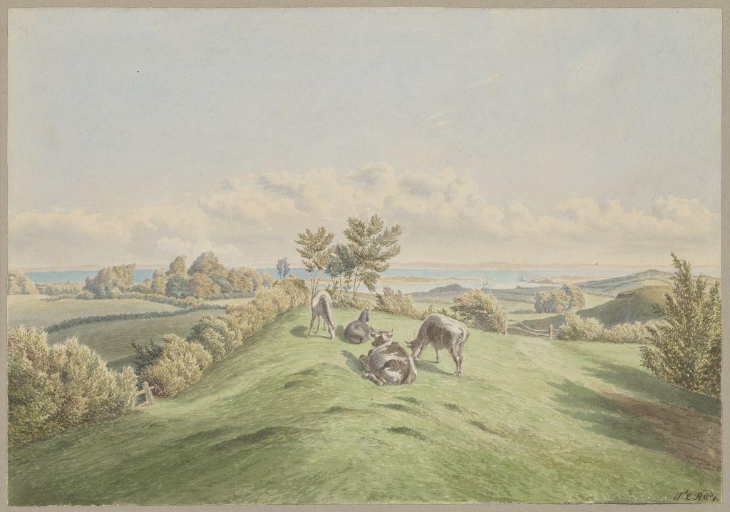 Theophil Raillard (1819 - 1894), Bei Nyegaard, Nordschleswig, ohne Datierung